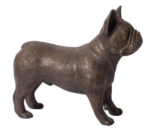French Bulldog - Phillips Collection