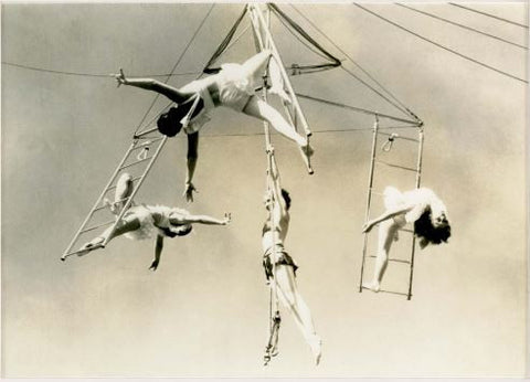Trapeze 1 - Natural Curiosities