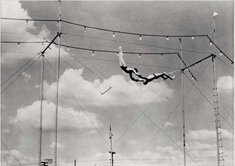 Trapeze 2 - Natural Curiosities