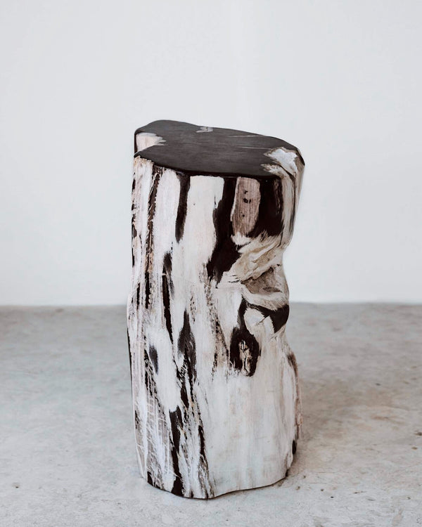 Story of Source Petrified Stool - Black & White