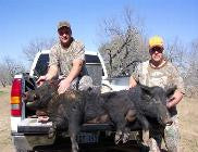 ALL INCLUSIVE ~ 3 Day Hog Hunt