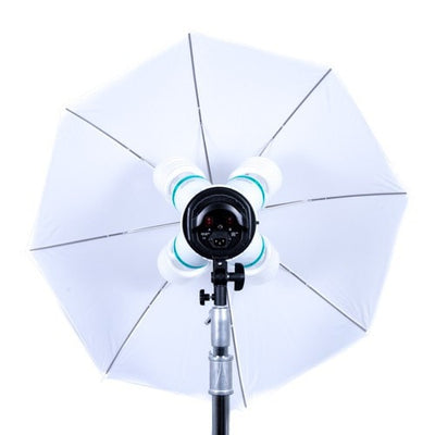 Quadstar 1000w Continuous Light Kit - Strobepro Studio Lighting