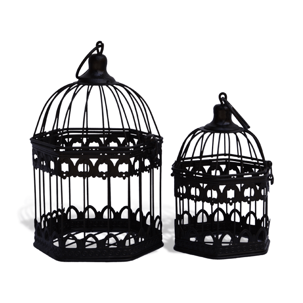 bird cages for sale, decorative bird cages