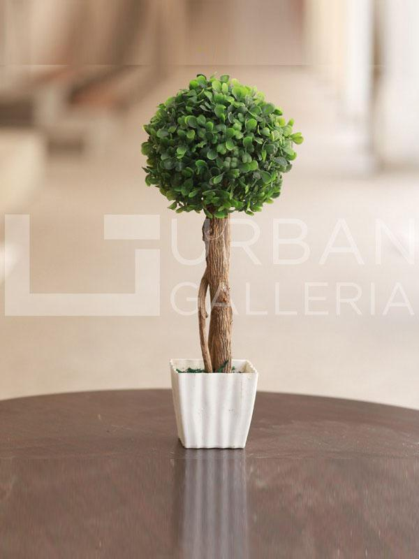 Bonsai planter 1 hand