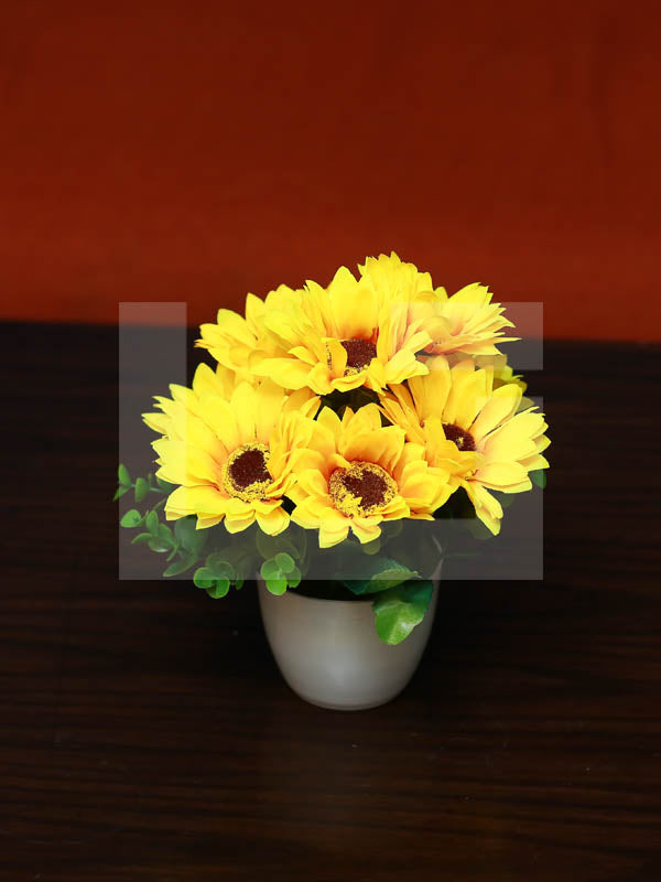 Yellow Bellow Planter