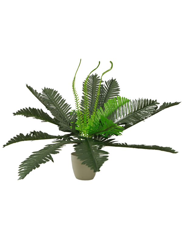 Mini Tropical leaves planter