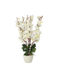 Floral Pot Planter-White flowers