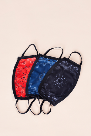 Reusable Fabric Face Mask - Paisley Bandana Jack + Mulligan