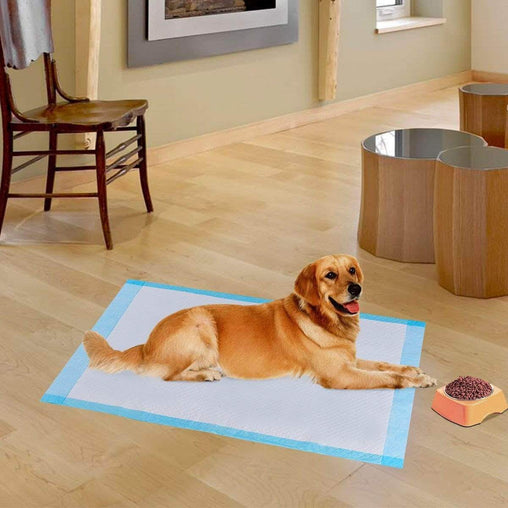 "DealsDot.Com Animals & Pet Supplies 100 pcs 30"" x 36"" Pet Wee Pee Piddle Pad"