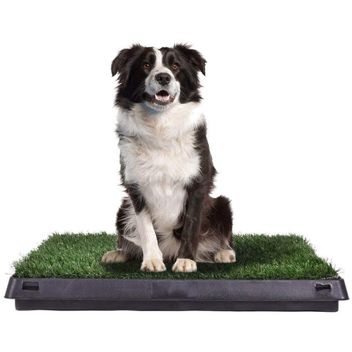 "DealsDot.Com Animals & Pet Supplies 25"" x 20"" Puppy Potty Training Toilet Turf Mat"