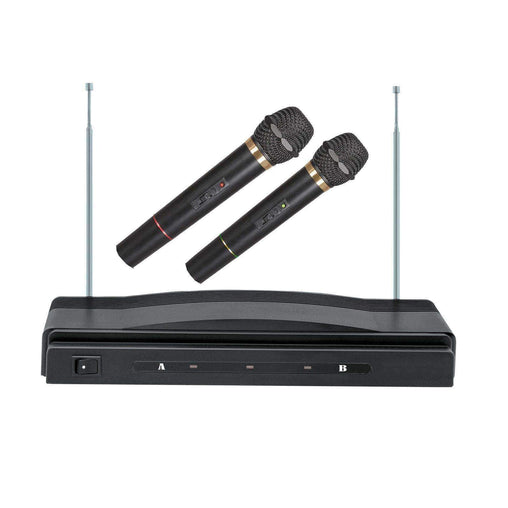 Supersonic Office and Home Supersonic Professional Wireless Dual Microphone System