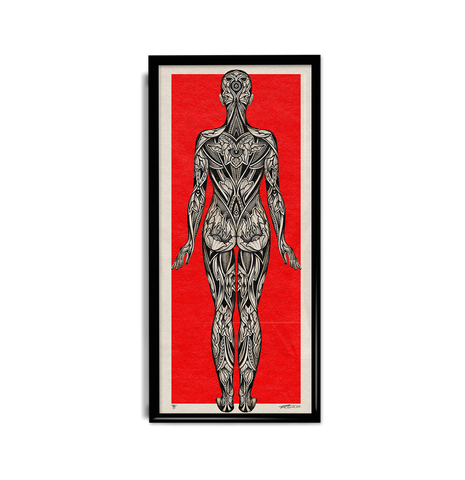 'Anatomical' Fine Art Print
