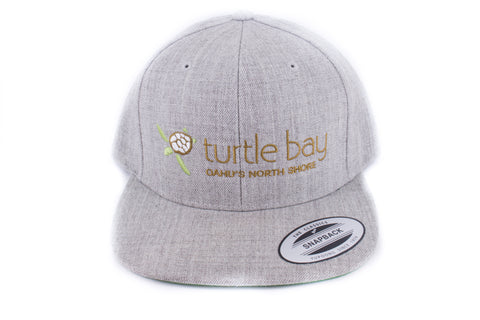 Turtle Bay NS Snap back - Gray / Gold brown