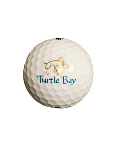 Heritage Turtle Logo Ball