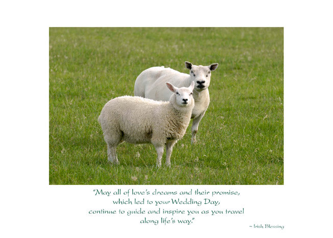 Irish Sheep Anniversary Card