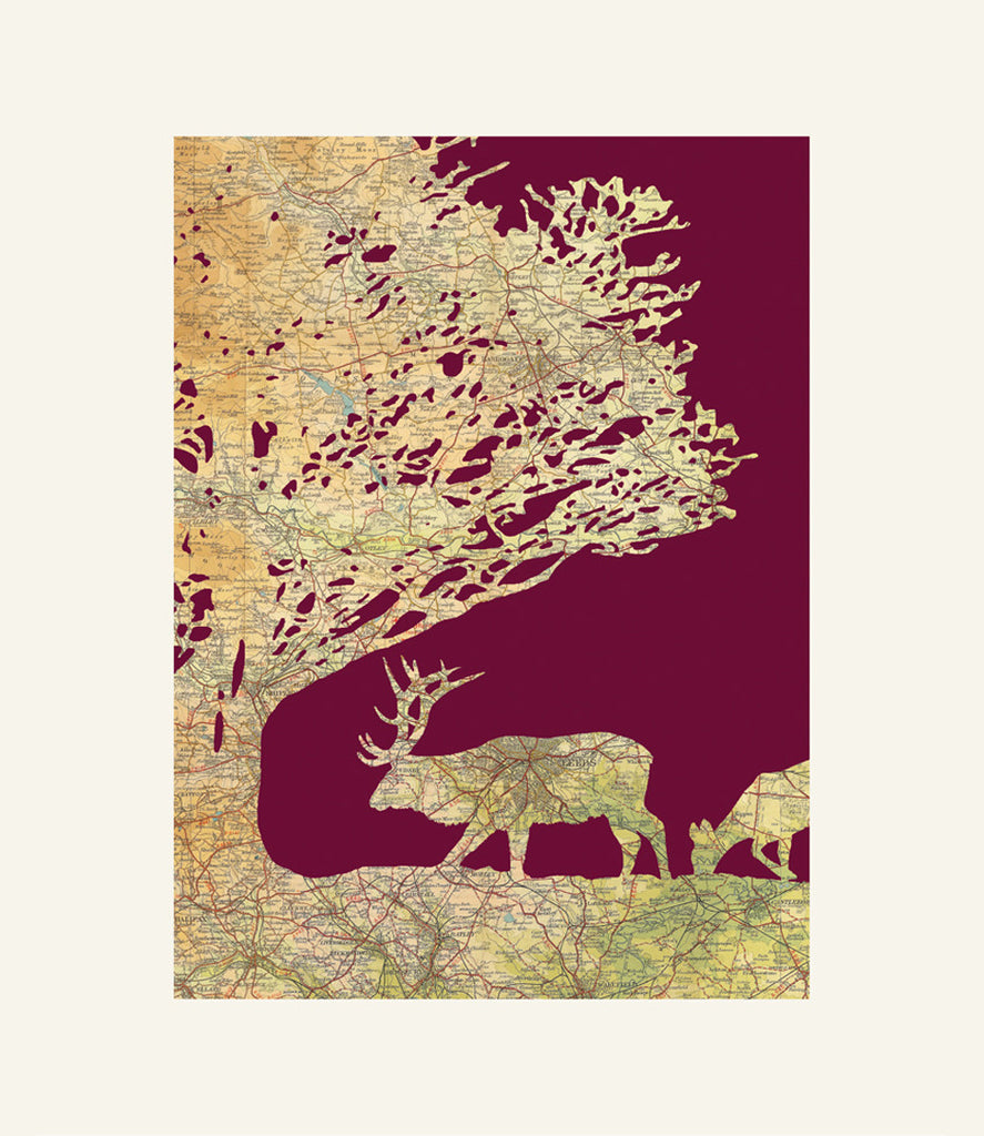Kate Thornton - Yorkshire Deer Print-DEVOTEDTO