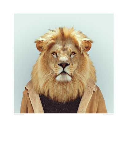 Zoo Portrait - Lion-DEVOTEDTO