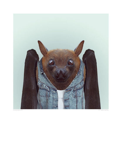 Zoo Portrait - Bat-DEVOTEDTO