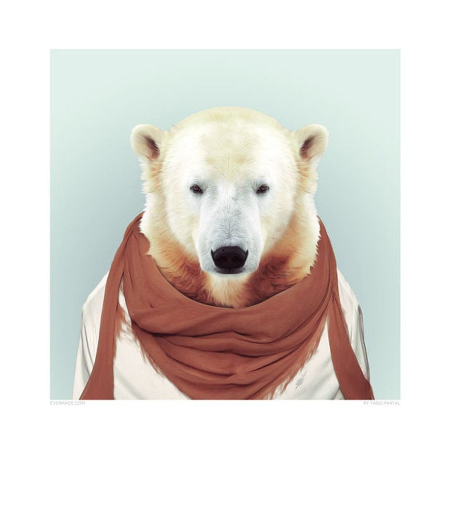 Zoo Portrait - Polar Bear-DEVOTEDTO