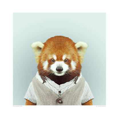 Zoo Portraits - Red Panda-DEVOTEDTO