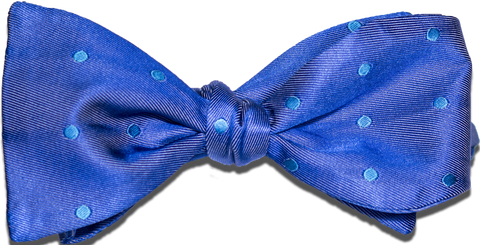 Oliveri - Royal with Aqua Dotted Satin Silk Bow Tie