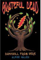 The Grateful Dead: Downhill From Here 1989 Alpine Valley Theater DVD Remastered 2013 16:9 Dolby Digital