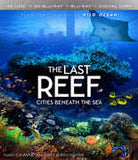 Imax The Last Reef: Cities Beneath the Sea 4k Ultra HD Blu-ray Digital & 3D Blu-ray 2PC 2016 Release Date 9/13/16