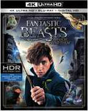 Fantastic Beasts and Where to Find Them:  J.K. Rowling 4K Ultra HD Blu-Ray Digital 3PC 2017 Release Date 3/28/17