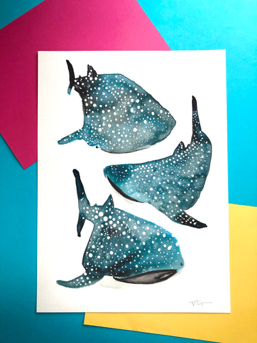 Whale Sharks A3 unframed giclee print - damaged
