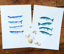 Load image into Gallery viewer, Sardine Illustration - unframed giclee print