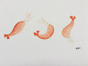 Three Prawns Illustration - unframed giclee print