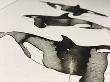 Load image into Gallery viewer, Orca Whale Illustration - unframed giclee print