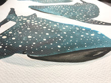 Load image into Gallery viewer, Whale Shark Illustration - unframed giclee print
