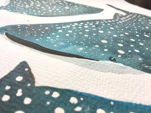 Whale Shark Illustration - unframed giclee print