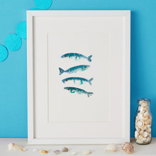 Load image into Gallery viewer, Mackerel Illustration - unframed giclee print