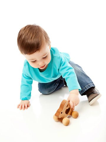 Homemade Wooden Bunny Push Toy