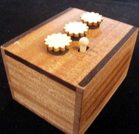 Mahogany Brain Teaser Lock Box