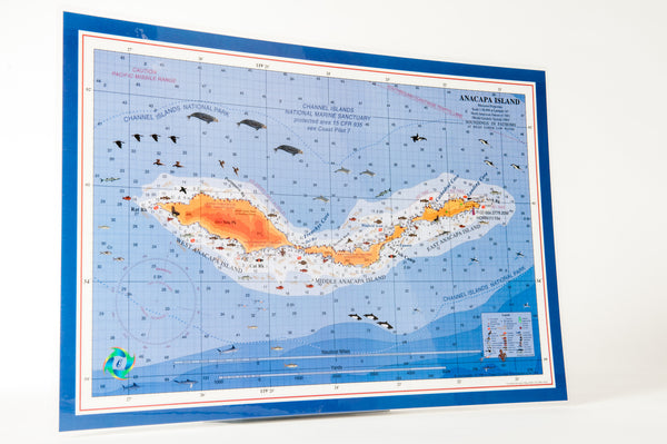 Anacapa Island placemats (set of 4)