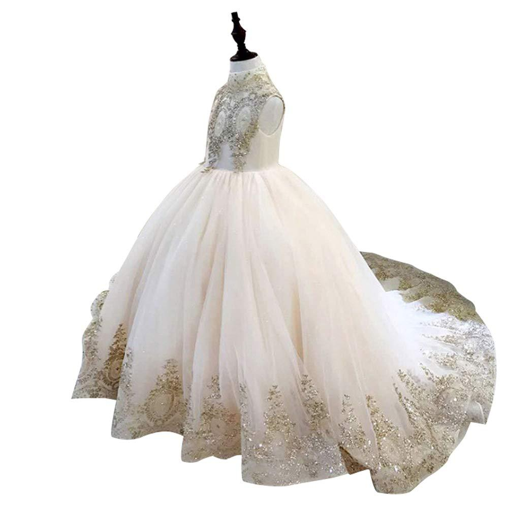 Flower girl dresses Girls Embroidered Prom Gowns Classic Birthday Party Long Puffy Prom Tulle Pageant Ball Gown for Kids