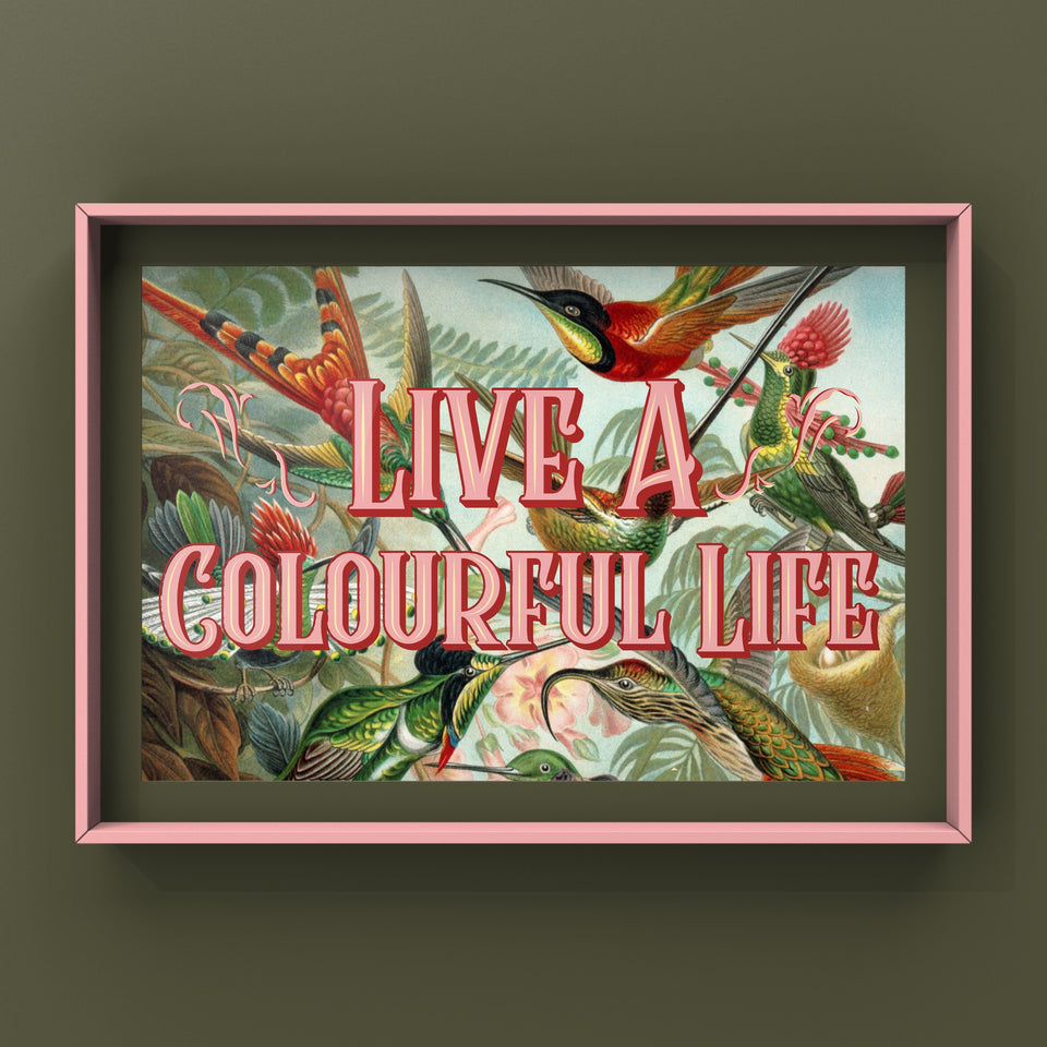 Live A Colourful Life Print