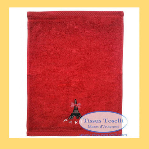 Eiffel Tower Wash Cloth or Flannel