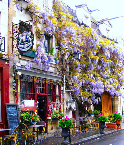 Art Photo - Paris Spring Cafe with Flowers