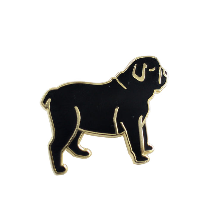 dog, chien, master, maître, boss, humour, pins