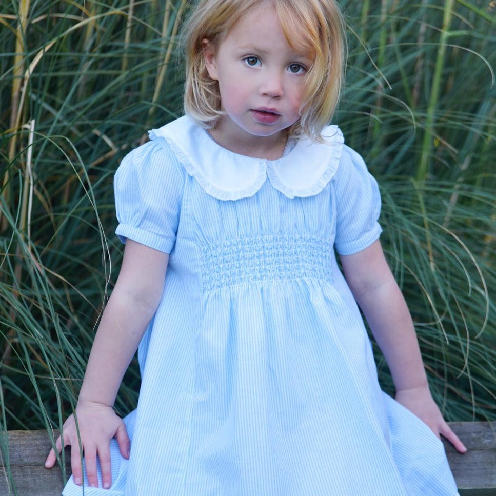 Blue Smocked Short Sleeved Dress