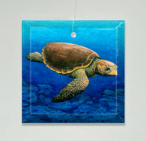 Loggerhead Turtle Ornament/Suncatcher