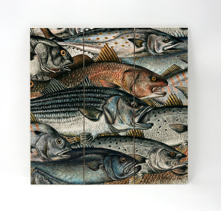 Surf Fish Wall Art