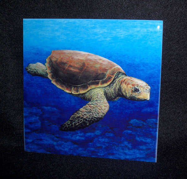 Loggerhead Turtle Ceramic Tile