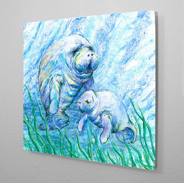 Manatees in Grass Aluminum Wall Art