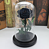 1Set Beauty and the Beast Red Rose In Glass Dome Wooden Based