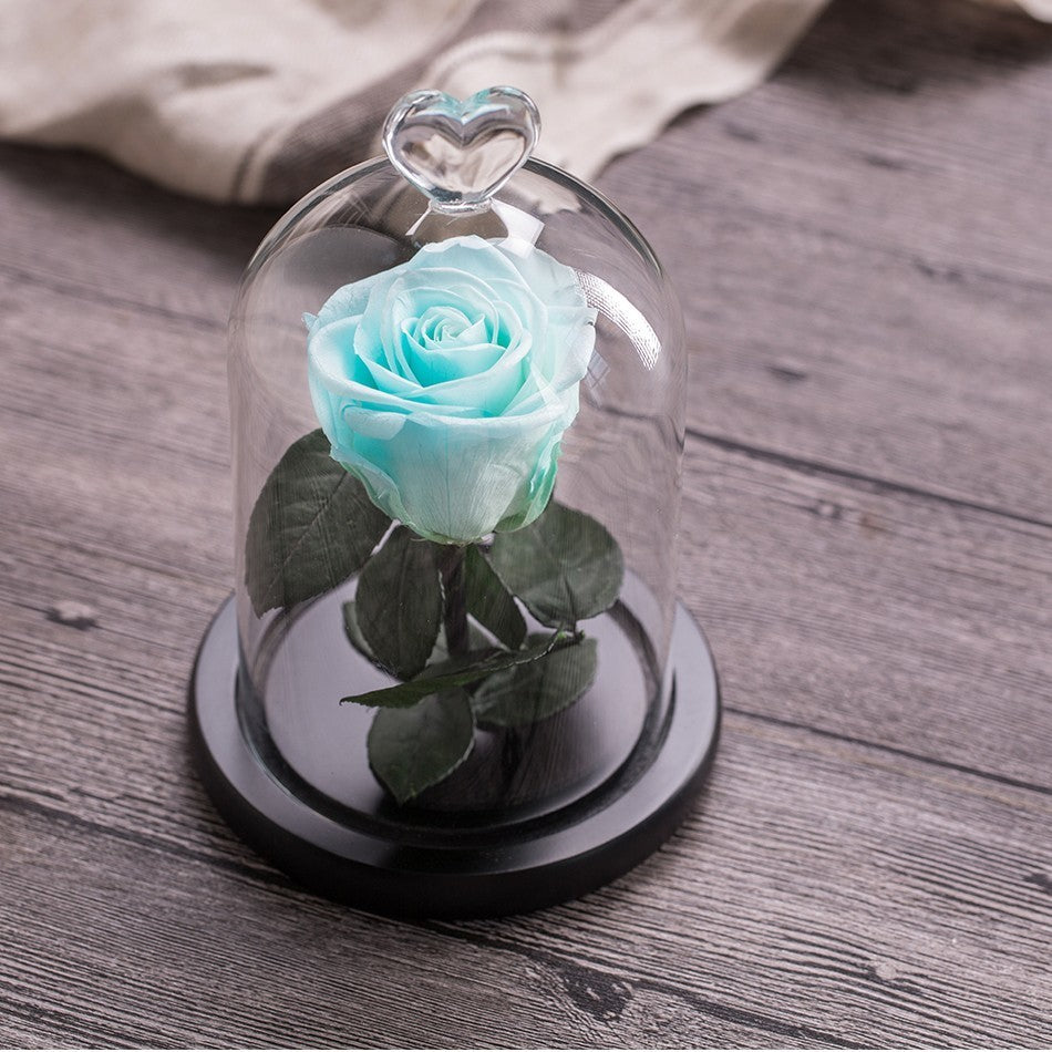 Artificial Eternal Flower Gift Beauty and the Beast Rose With Love Glass Black Case